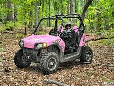 Pink Polaris Ranger RZR ATV if we haVe a girl, she gets one