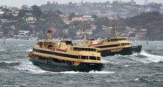Ferries plough through a heavy swell in Sydney Harbour after wild weather tore through the city. About of rain fell overnight, causing widespread flooding, and tress were felled by wind gusts of up to Sydney Ferries, Sydney City, Wild Weather, Water Crafts, The Good Old Days, Image Shows, Weekend Is Over, The Guardian, Old Photos