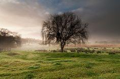 Mist near Toodyay,Western Australia