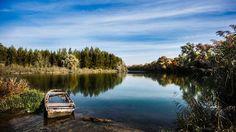 Poster von Herbst Natur Herbstlaub Landschaft - Dieses Bild als Wandposter günstig bestellen. Hochwertige