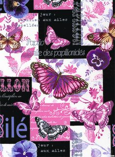 Papillon - Butterfly Collage - Black