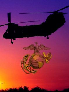 Mcrd San Diego, Once A Marine, Us Military Aircraft, Semper Fidelis, Military Quotes, Iraq War, Us Marine Corps, Us Marines, History Photos