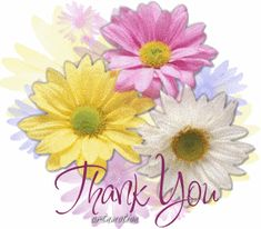Thank You For my birthday wishes! You are thoughtful and I so appreciated you making my day special! Love and hugs! Thank You Messages Gratitude, Thank You Card Sayings, Thank You Gifs, Thank You Pictures, Thank You Wishes, Thank You Images, Best Wishes Card, Thank You Card Design, Thank You Greetings