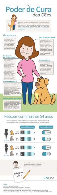 Pesquisas científicas provam o que muitos já sabiam há centenas de anos: é bom ter um cachorro em casa.