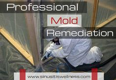 A trained professional who is educated and understands the relationship of human health to the environment ideally should do mold remediation.