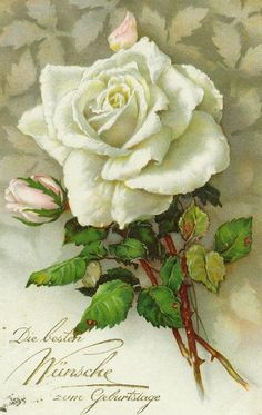 Vintage Postcard - Floral (dreamies.de (zpq31qswg7b.jpg)