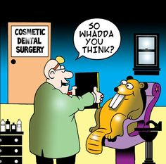 DISCOVER DENTISTS® Cosmetic Dentistry http://DiscoverDentists.com