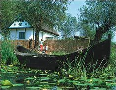 Donau-Delta und Schwarzes Meer 2017 Danube Delta, Romania, Aquarium, House Styles, Nature, Plants, Last Minute, Skirt, Bucharest