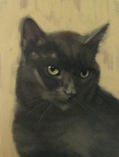 chlpatý čierna pussu