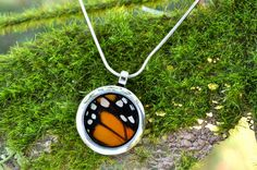 this is awesome.    Real Monarch Butterfly Wing Pendant Necklace by InsectArt on Etsy, $25.00