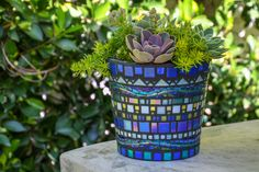 Mosaic Planters and Custom Orders by KBloomMosaics Mosaic Planters, Mosaic Garden Art, Mosaic Flower Pots, Mosaic Stepping Stones, Pebble Mosaic, Mosaic Glass, Mosaic Crafts, Mosaic Projects, Mosaic Ideas