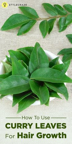 hair remedies Curry leaves are one of the best natural solutions for hair fall and other hair problems. How To Use Curry Leaves For Hair Growth Hair Remedies For Growth, Hair Growth Treatment, Hair Fall Solution, Hair Tonic, New Hair Growth, Tips For Hair Growth, Healthy Hair Growth, Prevent Hair Loss, All Nature