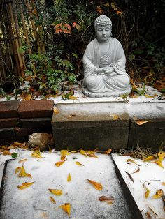 """Wintry Buddha, Jackson, MS  """"Time is the most valuable thing a man can spend."""" -Theophrastus"""