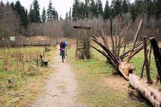 Ebersberger Forst Walderlebnispfad