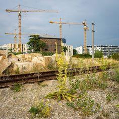 Der Liebe Augustin, Wiener Philharmoniker, Kunsthistorisches Museum, Bahn, Utility Pole, Pictures, Stairway To Heaven, Cinema Room, Bike Trails