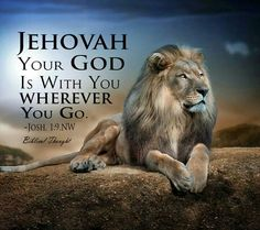 Be courageous and strong. Do not be struck with terror or fear, for Jehovah your God is with you wherever you go. Lion Wallpaper, Lion Of Judah, Bible Truth, Jehovah's Witnesses, Lord And Savior, Mundo Animal, King Of Kings, Bible Scriptures, Word Of God