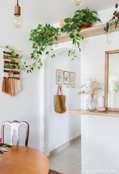 Sala de jantar de apartamento pequeno tem parede de tijolinhos brancos, prateleira com plantas pendentes e macramê na parede. White Brick Walls, Decoration Plante, Cute Dorm Rooms, Rack Design, White Home Decor, Small Apartments, Plant Decor, House Plants Decor, Living Room Designs