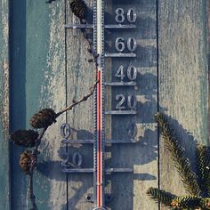 "Zinc Thermometer  Easy to read and weather resistant, this outdoor thermometer flawlessly marries function with style. When exposed to the elements, the zinc weathers to a beautiful patina.  - Zinc - Includes holes for hanging; hardware required - Outdoor use - Imported  19.8""H, 5.66""W, 1.14""D"