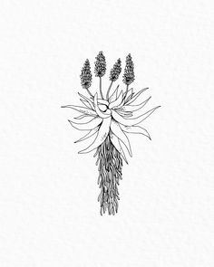 A A L W Y N Tattoo | a proudly South African custom illustration for the lovely Jean Pierre. It's such an honour when people enjoy my… South African Flowers, South African Art, African Art Projects, Pagan Tattoo, African Tattoo, Wrought Iron Decor, Pottery Painting, Future Tattoos, Flower Tattoos