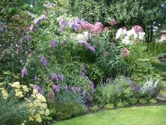 This perennial bed provides a wonderful mix of color and exuberance, but still retains a sense of formality, edged by stones and the neatly trimmed lawn.
