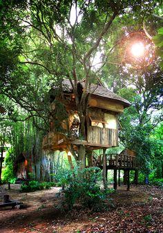 Rabeang Pasak Chiang Mai Treehouse Resort in Thailand - Longan treehouse | Departful