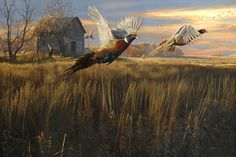 Before The Storm - Wildlife painting by Scot  Storm