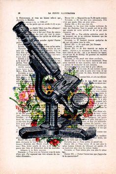 Antica stampa del microscopio cimestry laboratorio scienza