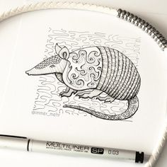 Love this armadillo illustration! I even use this photo as a wallpaper for my…