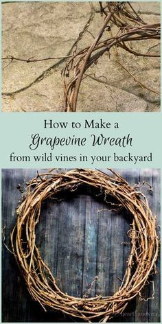 Instead of throwing them in the trash or compost, use invasive vines to make a wild grapevine wreath for your home decor. #diy #gardencraft #wreaths