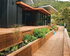 Within Reach: Outdoor Walks W/ Raised Beds Combine Beauty U0026 Function Pinned  By Phillips Zahtz. Wheelchair ...