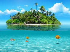 Bring your desktop to life with Tropical Beach Living Desktop! Enjoy pristine tropical beaches complete with palm trees and beautifull. Island Resort, Tropical Paradise, Dream Vacations, Vacation Spots, Vacation Ideas, Travel Pictures, Beautiful Places, Beautiful People, Animales