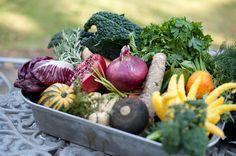 Conscious Eating: Proper Food Combining (KAPU)