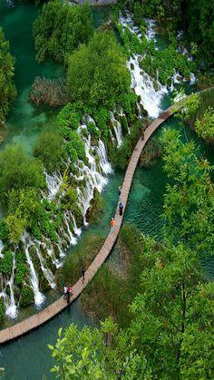 Amazing world nature
