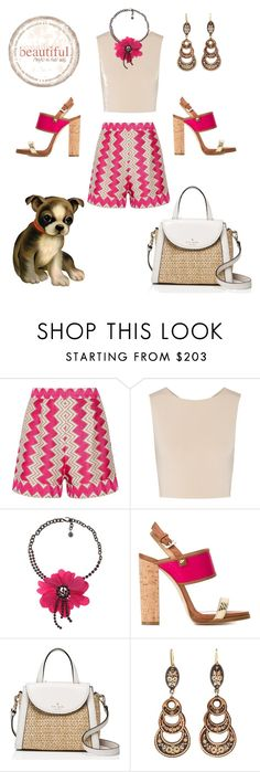 """""""Dog Walker"""" by neverboring on Polyvore featuring Missoni, Alice + Olivia, Lanvin, Dsquared2 and Kate Spade"""