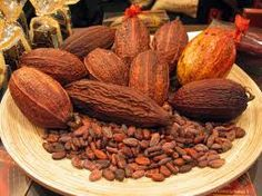 cocoa seeds - The cocoa bean, also cacao or simply cocoa (/ˈkoʊ.koʊ/) or cacao (/kəˈkaʊ/), is the dried and fully fermented fatty bean of Theobroma cacao, from which cocoa solids and cocoa butter are extracted. Theobroma Cacao, Raw Cacao Powder, Cacao Nibs, Chocolate Making, Chocolate Extract, Flourless Chocolate, Cacao Cru, Cacao Beans, Gastronomia