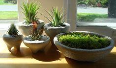 Zen Minimalist Concrete Handmade Mini Moss Bowl Terrarium by MyZen, $17.99