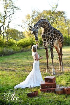 """another photo from the """"trash the dress"""" photoshoot at the Nashville Zoo!"""