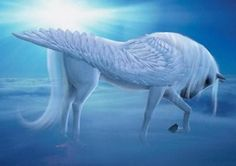freeehdwallpapers club offers best Pegasus And HD Wallpapers For Desktop Background in high definition for your pc desktop.We have selected Pegasus And HD Wallpapers For Desktop Background in distinctive size and resolutions from diverse assets of web. Unicorn And Fairies, Unicorn Fantasy, 3d Fantasy, Unicorn Art, Fantasy Kunst, White Unicorn, Cartoon Unicorn, Unicorn Horse, Unicornios Wallpaper