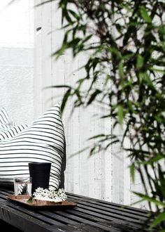 Black + white stripe