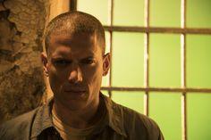 Prison Break Season 5 Wentworth Miller Image 6 (28)