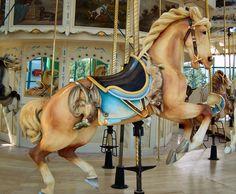 Carousel Center Carousel PTC Outside Row Jumper © Ann Lioio