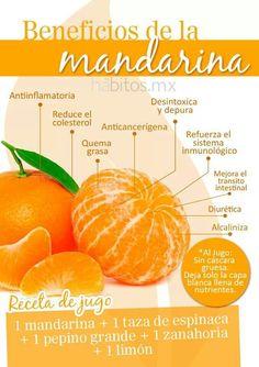 Principales beneficios de la Mandarina - AlimentosParaCurar.com
