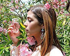 Rose Couture: il profumo di Elie Saab