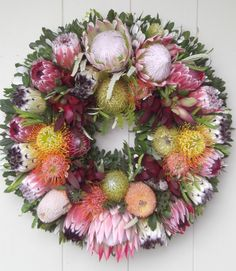 I'm looking forward to having them in our garden! Flor Protea, Protea Flower, Protea Wedding, Wedding Flowers, Fresh Wreath, Flower Chart, Valentines Flowers, Tropical Flowers, Trees To Plant