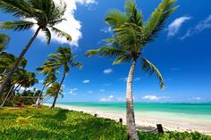 10 praias do Nordeste brasileiro que deixam o Caribe no chinelo | MdeMulher