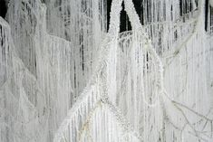 Vertical Emptiness: Crystallized Tree Branches Dripping with Strands of Hot Glue by Yasuaki Onishi trees installation glue