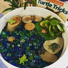 WEBSTA @our_kinder Another Kmart play tray small world! We've used an Ikea placemat in the base (just needs a small trim for a good fit) and made a turtle imaginative play space. Perfect with all of the current excitement around our pet long neck turtle!
