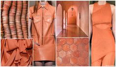 Top Color, Womens Market, S/S 2016, Persimmon The Desert Bloom color palette combines earthy neutrals along with emerging fashion colors. Base hues of Khaki, Hazy Taupe and Twine are enlivened by richer bases like Dark Roast and Olive. Red casted Rust and orange casted Copper both play influential roles, while Marigold is a yellow with significant orange influence. Persimmon keeps the palette lively et to pink and orange casts. Cooler hues include Soldier Blue, Moonstone and Pine.