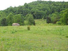 Little barn that my papaw built