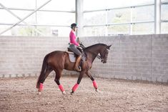 Andrea and Nonie training in the double bridle